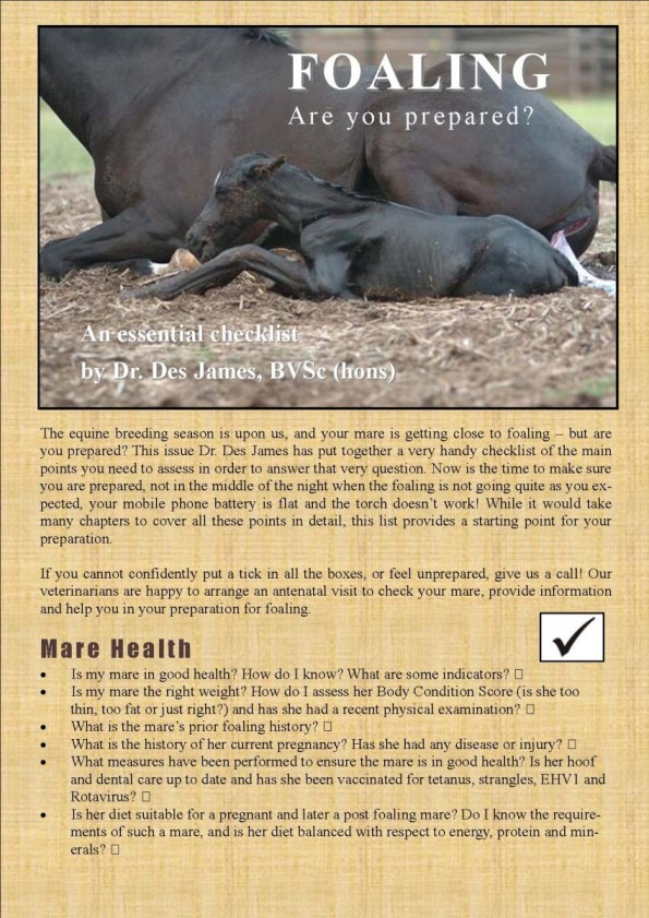 Foaling are you prepare DJ article