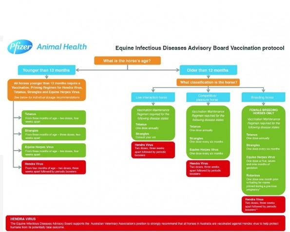 hendra vaccine protocol(1)